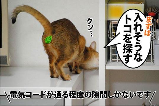 20111213_02.jpg