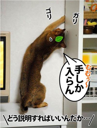 20111213_04.jpg