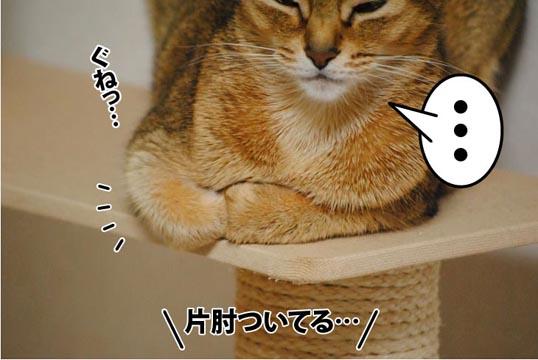 20111214_01_2.jpg