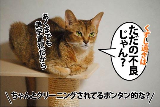 20111214_03.jpg