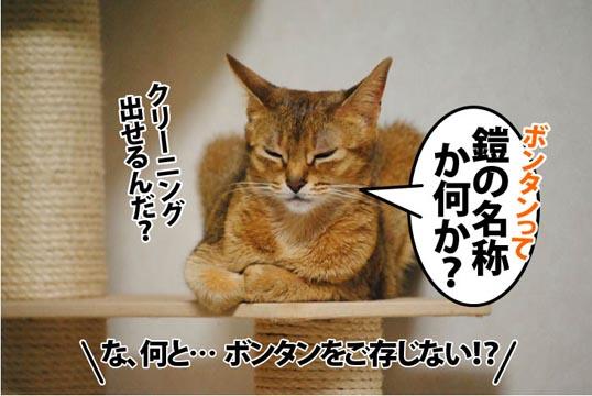 20111214_04.jpg