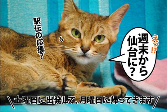 20111215_01.jpg