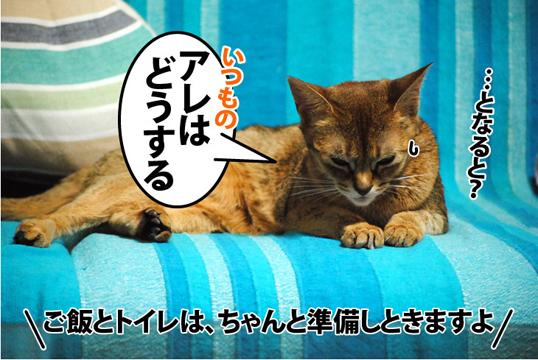 20111215_04.jpg