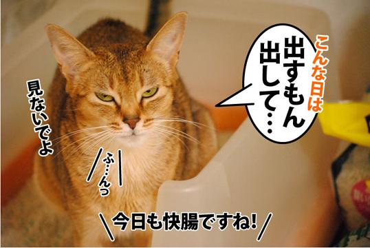 20111216_02.jpg