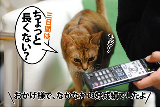 20111220_03.jpg