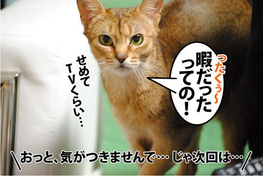 20111220_04.jpg
