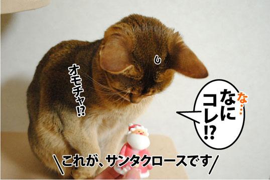 20111225_03.jpg