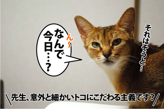 20111225_05.jpg