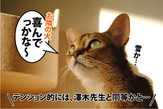 20111225_07.jpg