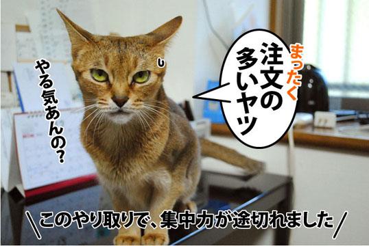 20111229_04.jpg