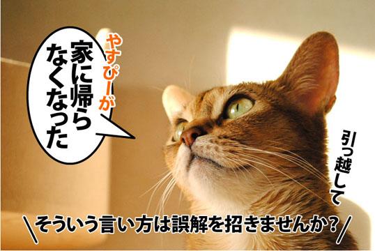 20111230_02.jpg