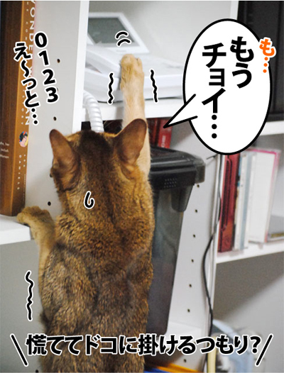 20120103_05.jpg