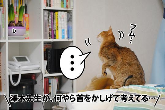 20120104_03.jpg