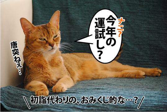 20120105_01.jpg