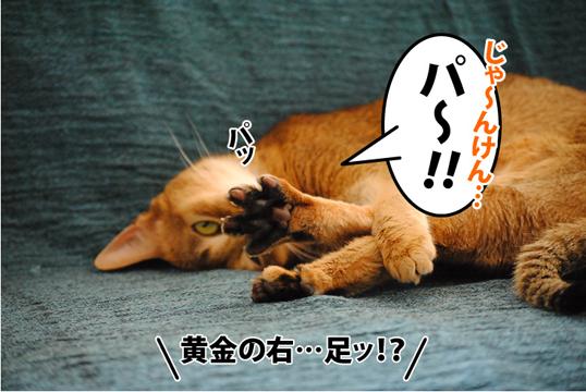 20120105_03.jpg