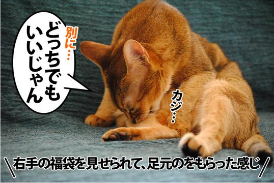 20120105_04.jpg