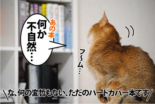 20120107_01.jpg