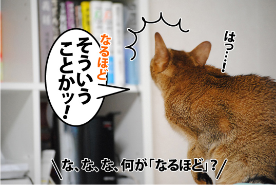 20120107_02.jpg