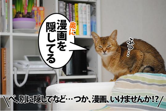 20120107_03.jpg