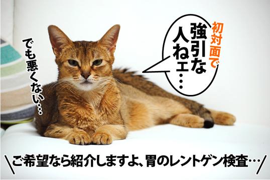 20120112_04.jpg