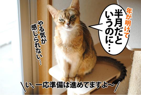 20120114_01.jpg