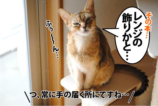 20120114_03.jpg