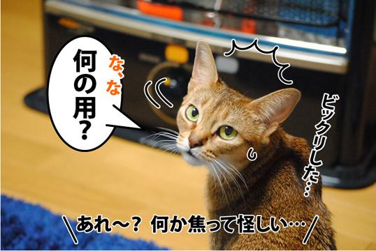 20120116_02.jpg