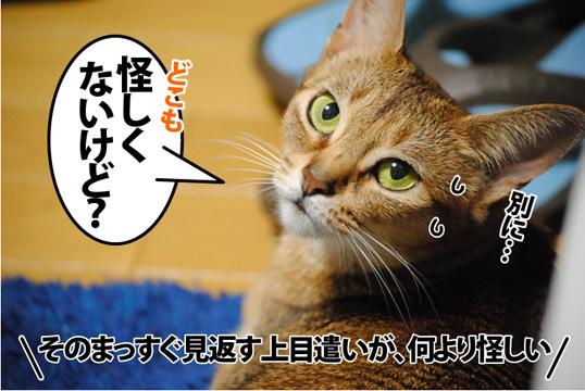 20120116_03.jpg