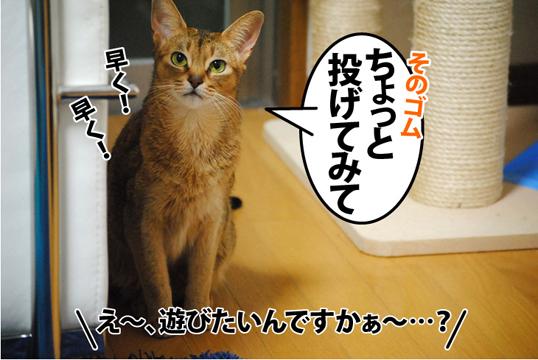20120117_01.jpg