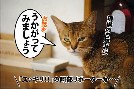 20120120_02.jpg