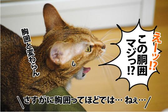 20120121_03.jpg