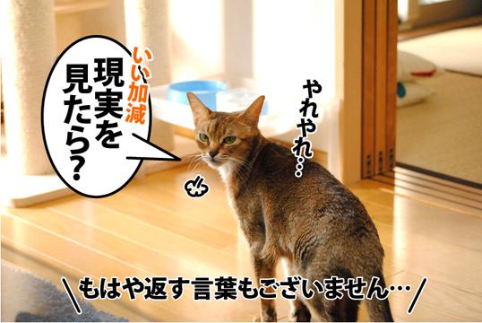 20120121_04.jpg