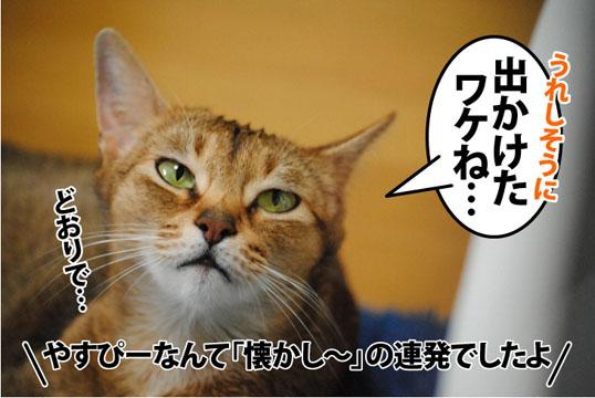 20120123_01.jpg