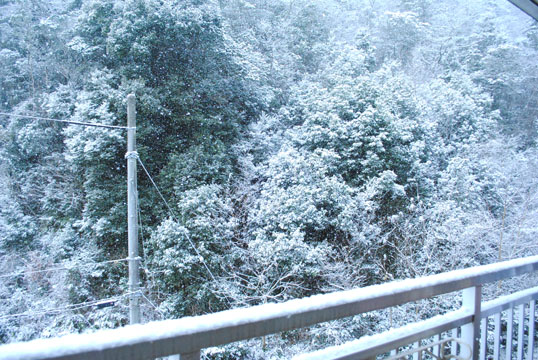 20120125_02.jpg