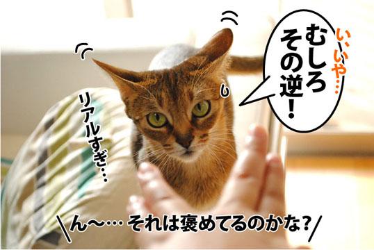 20120125_09.jpg