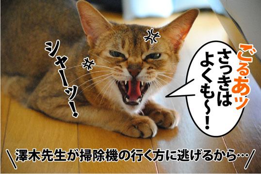 20120127_01.jpg
