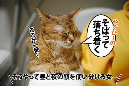 20120127_03.jpg