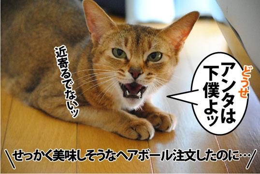 20120127_04.jpg