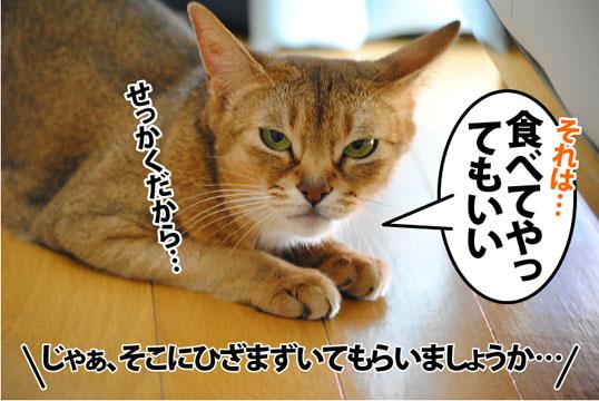 20120127_05.jpg