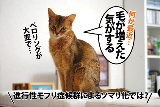 20120128_01.jpg