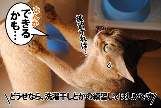 20120129_04.jpg
