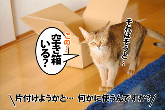 20120130_03.jpg
