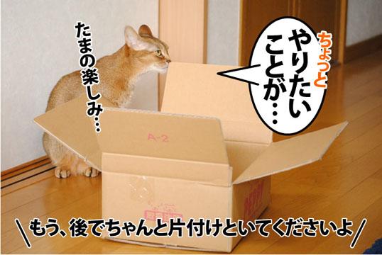 20120130_04.jpg