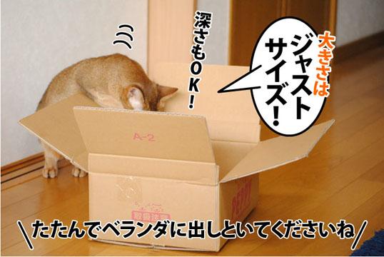 20120130_05.jpg