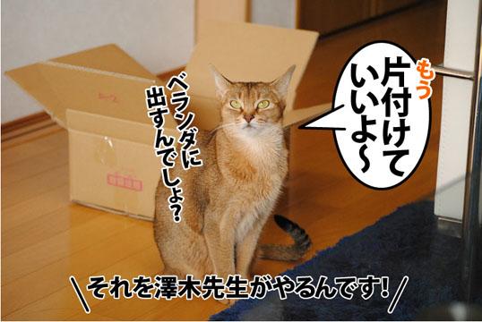 20120130_07.jpg