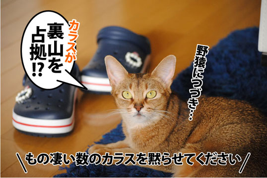 20120131_04.jpg