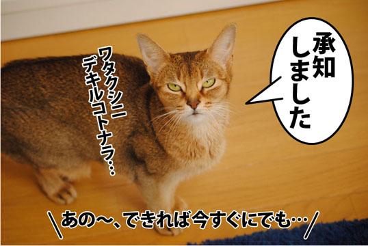 20120131_06.jpg
