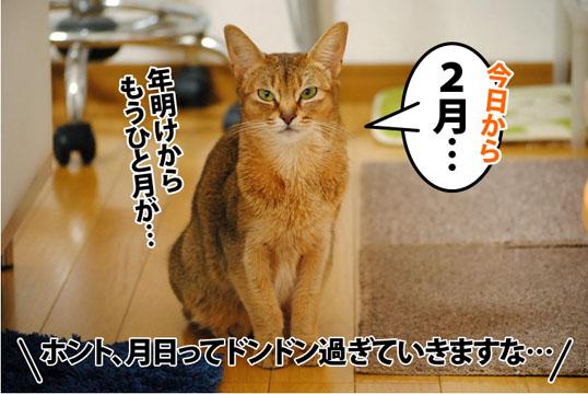 20120201_01.jpg