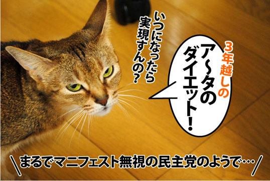 20120201_03.jpg
