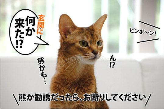 20120207_01.jpg